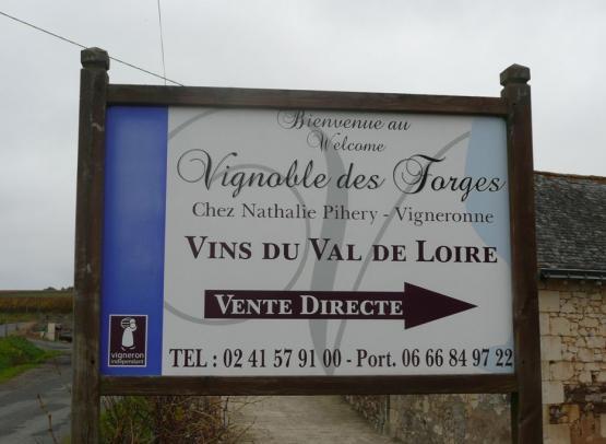 VIGNOBLE DES FORGES