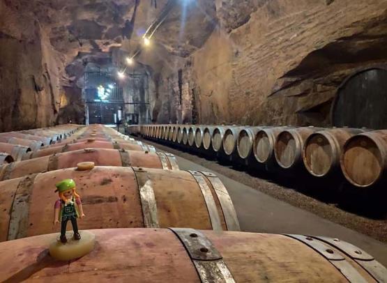 Cave Monplaisir / Monplaisir wine cellar - Chinon, France.