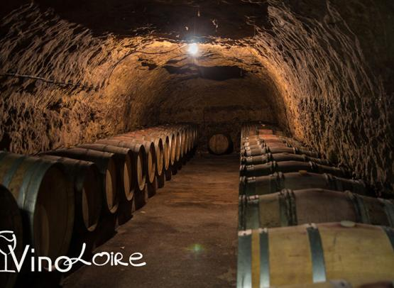 Vinoloire---Credits-Vincent-Delaby--14--3