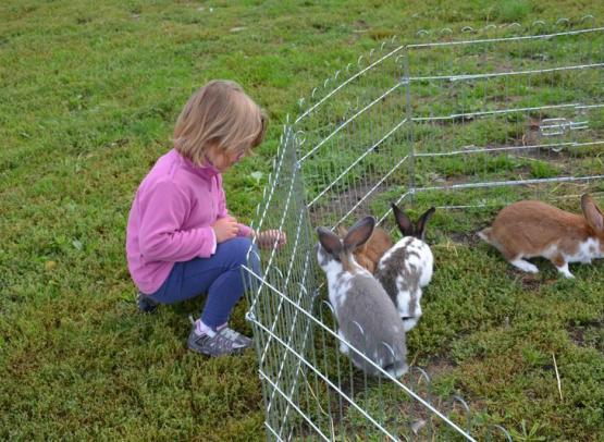 Fête agri paysanne Saute Mouton 122