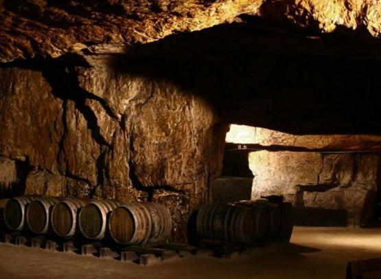 domaine de la chevalerie - cave - © domaine de la chevalerie