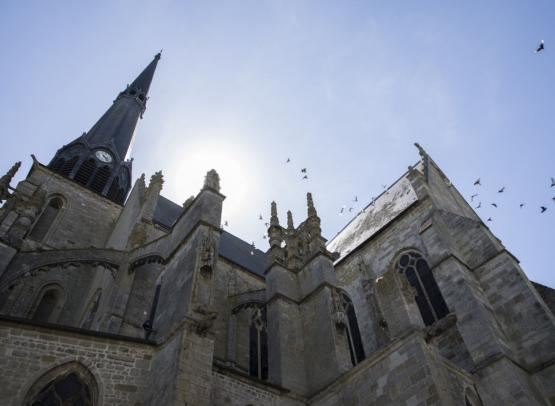 Pithiviers - Eglise (8)