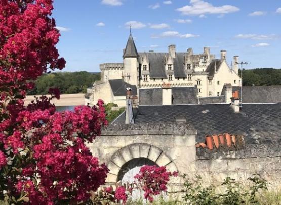 Chateau-de-Montsoreau--L-ile-Belllule