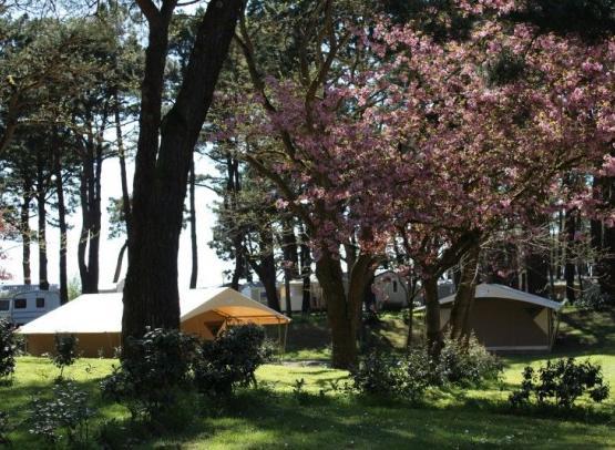 800x600-camping-estuaire-tente-toilee2-2910