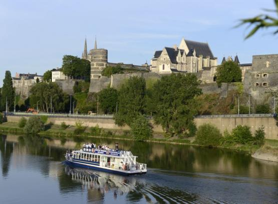 L'Hirondelle - Angers