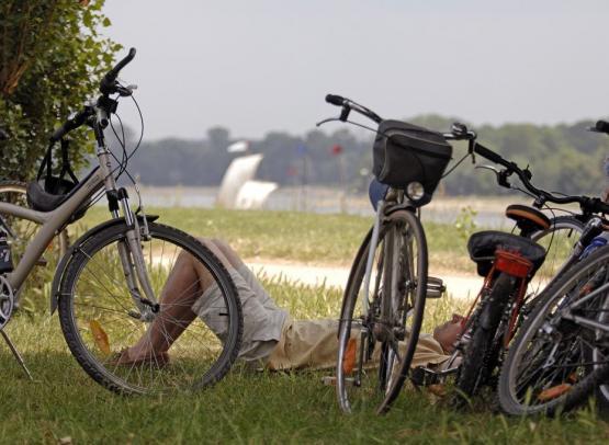 Loire-a-vélo-Anjou-Mauges©D.Drouet