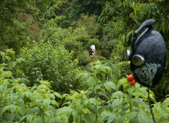 (17)jardinart-valaire©CDT41-lgsamantha