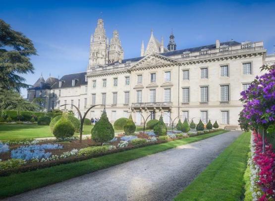 Museum of fine Arts - Tours