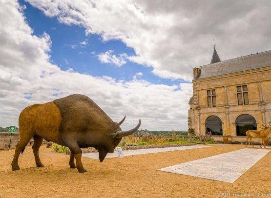Musee_Prehistoire_Grand_Pressigny_Cour_Bison_Credit_ADT_Touraine_JC_Coutand