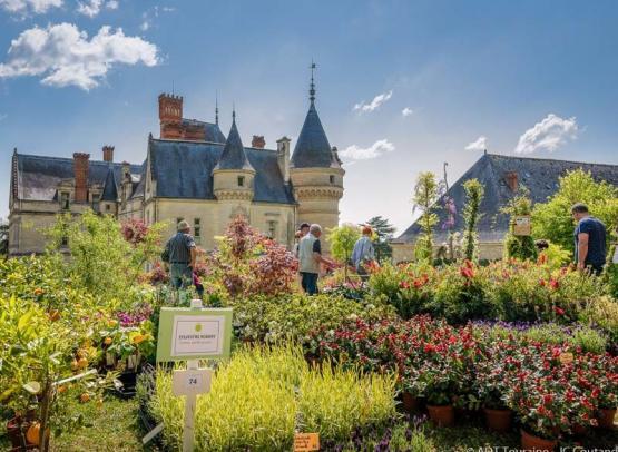 Fête des plantes et des poules - La Bourdaisière castle