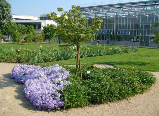 Jardin-Botanique06