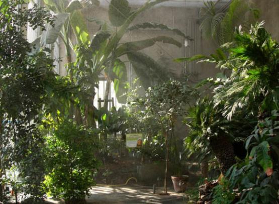 Jardin-Botanique07