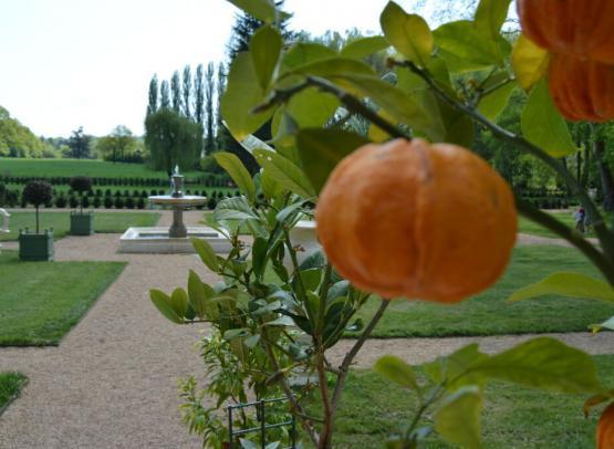 4. Orangers et Grands Parterres - 4