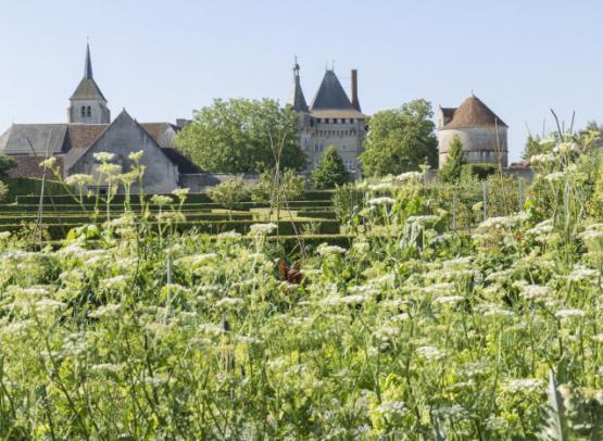 CMN_jpdw14_0209_Château de Talcy_© Jean-Pierre Delagarde  Centre des monuments nationaux