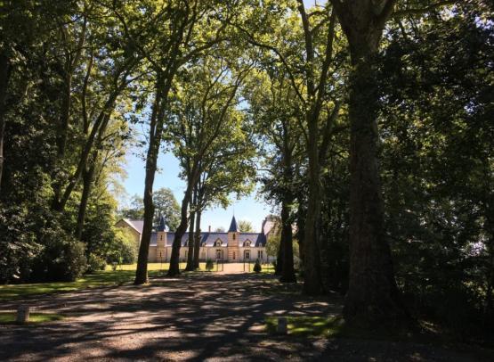 Château du Patys @Château du Patys