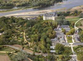 Vue-Aerienne-Chateau-Chaumont-sur-Loire