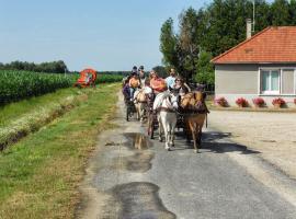 (1)balade-equestre-attelage-plaisir-feings©Attelage-Plaisir