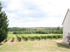 Domaine-de-la-Desoucherie---Vignoble-autour-de-Cheverny---Vacances-gourmandes-en-Loir-et-Cher-Val-de-Loire--Domaine-de-la-Desoucherie