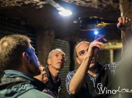 Vinoloire---Credits-Vincent-Delaby--1--2