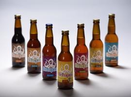 Beers Octopus