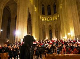 L'Orchestrale©orchestrale