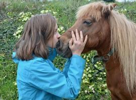 girl-shetland-pony-3260143_640