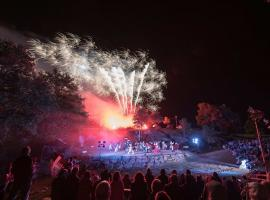 spectacle-bataille-torfou-1