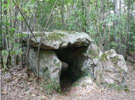 PCU49-dolmen-pierre-au-loup