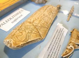 mammouth-gravure-fossile-museesavigneen-credit-otcb