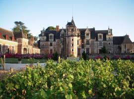 Château de Jallanges - Vernou-sur-Brenne