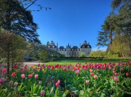 Tulipes-au-chateau-de-cheverny-Mir-Photos-ADT41--22--2