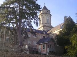 L'Abbaye vue depuis la Place Jules et Marie Sourice