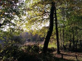 forêt Brain-sur-Longuenée