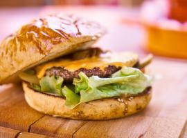 hamburger-with-patty-2267538