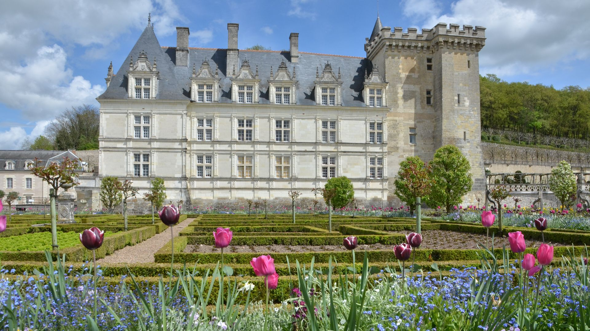 ch teau and gardens of villandry the loire valley a. Black Bedroom Furniture Sets. Home Design Ideas